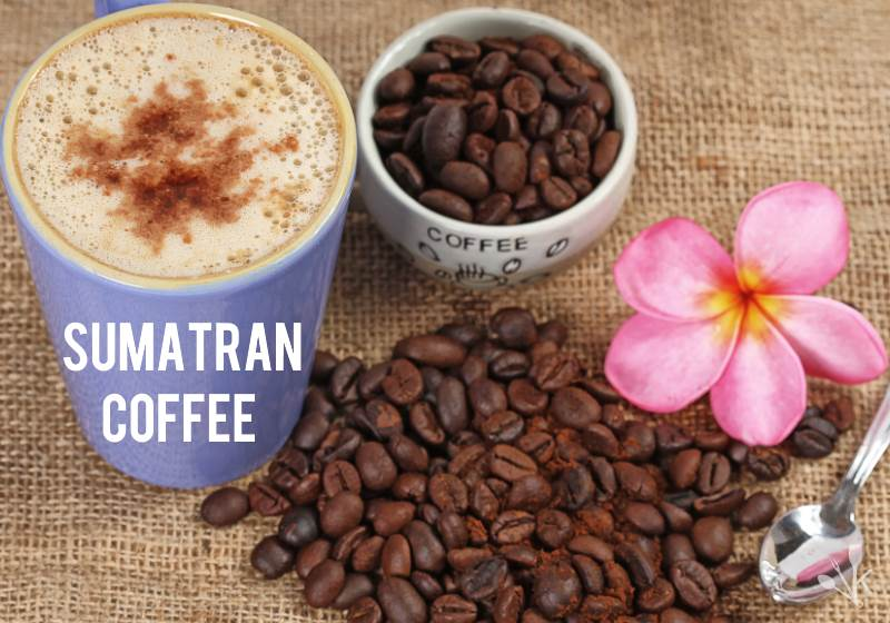 Best Sumatra Coffee