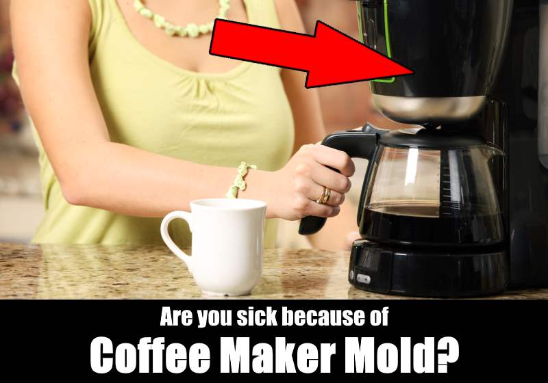 Coffee Maker Mold : Coffee Maker Mold Is Making You Sick! KitchenSanity