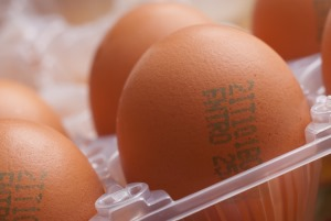 How Long Are Hard Boiled Eggs Good For? | KitchenSanity