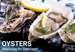How Long Do Oysters Last? Fresh And Alive!