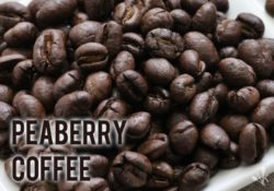 Best Peaberry Coffee Bean Guide & Reviews
