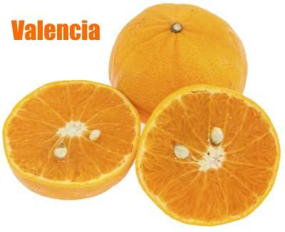 how to make valencia orange refresher